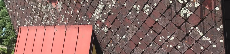 Ukázka realizace - Nátěr střechy v Olomouci