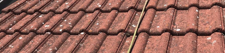 Ukázka realizace - Čištění střechy v Moravském Žižkově